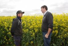 """Cranrook farmer Theo Cunningham (left) and Burando Hill salesman Michael Kowald in front of a healthy GD53 canola crop which was established in April . """"We can achieve these sort of crops more consistently now we have a ProTrakker linked to a DBS and liquid injection,"""" Theo said."""
